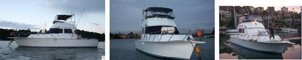 Лодка Ваху Wahoo на 8 человек для рыбалки в Сиднее