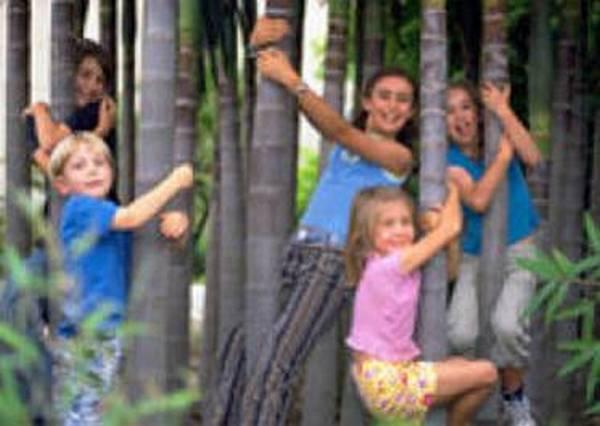 Сад для детей в Королевском Ботаническом Саду Мельбурна (Royal Botanic Gardens)
